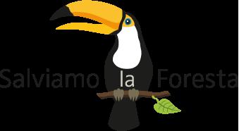 Risultati immagini per SALVARE LE FORESTE TROPICALI