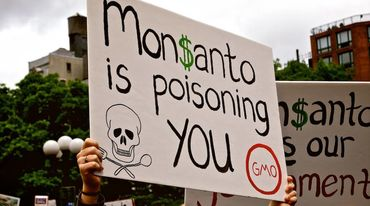Manifestazione Monsanto is poisoning you